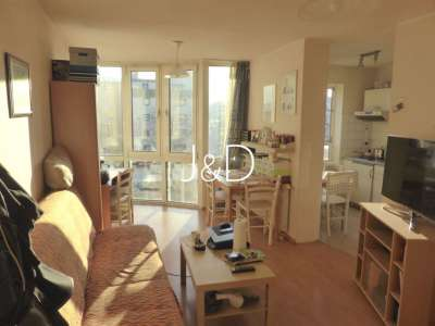 vermietetes 1-Zimmer-Apartement in Freiburg - Betzenhausen - Wohn-/Schlafzimmer